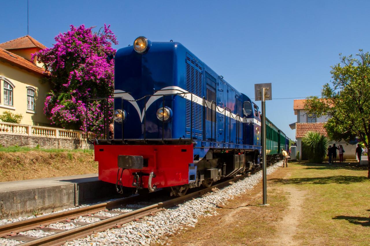 Comboio Histórico - Edição  Verão 2021